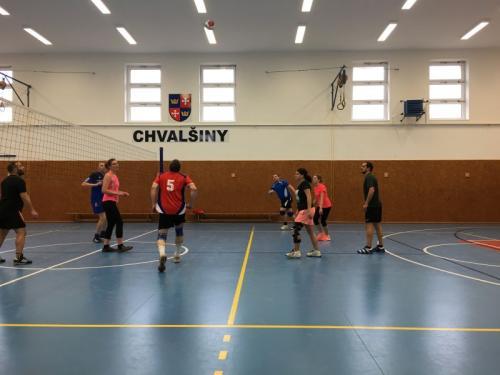 Volejbalový turnaj 17.3.2018
